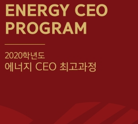 2020 Energy CEO Program